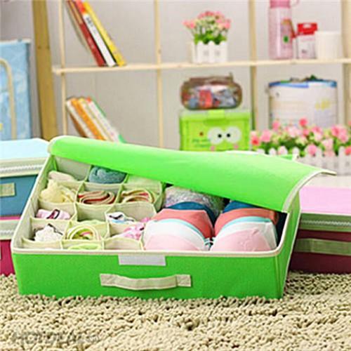 Покупка  Комбинированный органайзер для нижнего белья с крышкой. Зеленый в  Интернет-магазин Zelenaya Vorona™